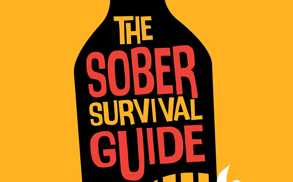 The Sober Survival Guide Book by Simon Chapple